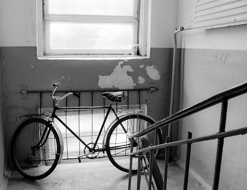куда звонить при краже велосипеда Быть может