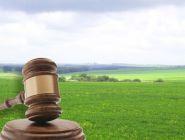 Архангельским муниципалитетам могут вернуть право распоряжаться землей