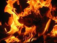 Жилые дома спасли от пожара
