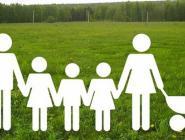 Земля для многодетных семей: в лидерах по области – Красноборский район