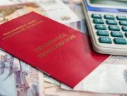 ПФР подсчитал доход от конфискации средств у коррупционеров