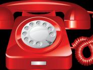 МЧС России окажет помощь в запуске телефона «117» для помощи семьям и их детям