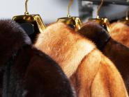 О проверках меховых изделий