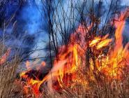 Поморье готовится к сезону пожаров