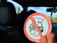 В Котласе сотрудники Росгвардии задержали нетрезвого автолюбителя
