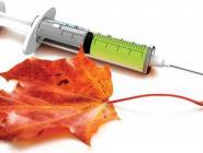 Более 62,7 млн россиян сделали прививки против гриппа