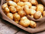 В России стало меньше собственной картошки