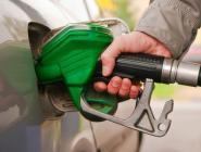Цены на бензин и «дизель» удастся удержать в пределах инфляции