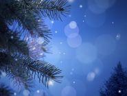 Новогодний прогноз от Архангельского Гидрометцентра