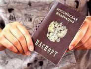 Решение по дизайну электронного паспорта в России примут летом