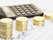Региональный бюджет 2018: госдолг снижается, доходы растут
