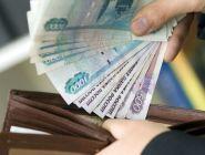 Россияне рассказали, за какую зарплату будут хорошо работать