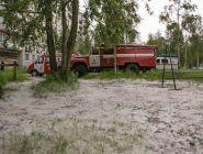 В Архангельске и области - пожары из-за тополиного пуха