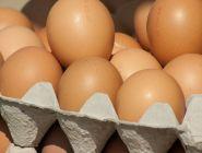 Специалисты Роскачества дали советы по выбору куриных яиц