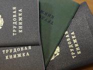 Пенсионный фонд оцифровал трудовые книжки россиян
