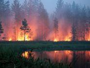 Главная задача – качественно и своевременно подготовиться к пожароопасному сезону – 2020
