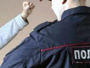 Несовершеннолетний воспитанник детского дома подозревается в оскорблении представителя власти