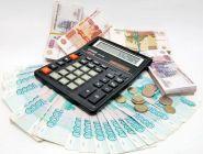 Руководителей госучреждений хотят заставить предоставлять сведения о расходах