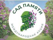 Котлас присоединится к акции «Сад Памяти»