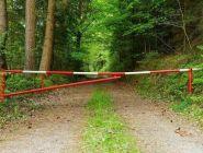 Патрулирование лесов региона усилено