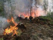 182 лесных пожара ликвидировано с начала сезона в Поморье
