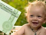 СНИЛС на новорожденных оформляется автоматически