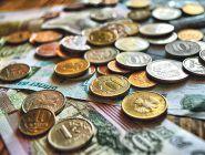 Минтруд предложил проиндексировать соцвыплаты с 1 февраля на 4,9%