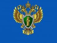 Котласская межрайонная прокуратура выявила нарушения при обращении с ТКО