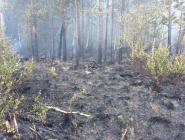 Обстановка с пожарами в Котласском районе в 1 квартале 2018 года