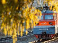 Некоторые профессиональные праздники в России могут отменить