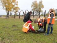 Железнодорожники высадили деревья в экопарке Котласа
