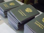 Переход на электронные трудовые книжки для граждан будет добровольным