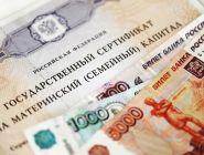 Более 800 семей региона обратились за ежемесячной выплатой из материнского капитала