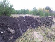 Рекультивация земли или захоронение отходов?