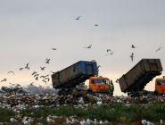 Разрешат ли областным властям заключать договоры на ввоз мусора из других регионов?