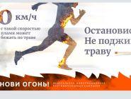 56 лесных пожаров ликвидировано в Поморье с начала сезона