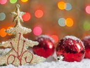 Роструд напомнил, что 31 декабря в этом году станет последним рабочим днем