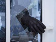 Котласские полицейские задержали дачного вора