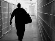 Досрочно из мест лишения свободы освободился уже 101 человек