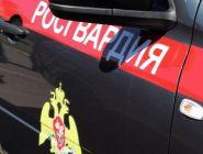 В Котласе сотрудники Росгвардии задержали подозреваемого в мошенничестве в сфере кредитования