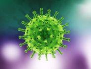 За последние сутки в Поморье выявлен 281 новый случай заболевания COVID-19