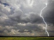 Оправдываемость предупреждений Росгидромета об опасных погодных явлениях в 2020 году – 95%